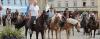 """Führung zum Thema """"Giftpflanzen für Pferde"""""""